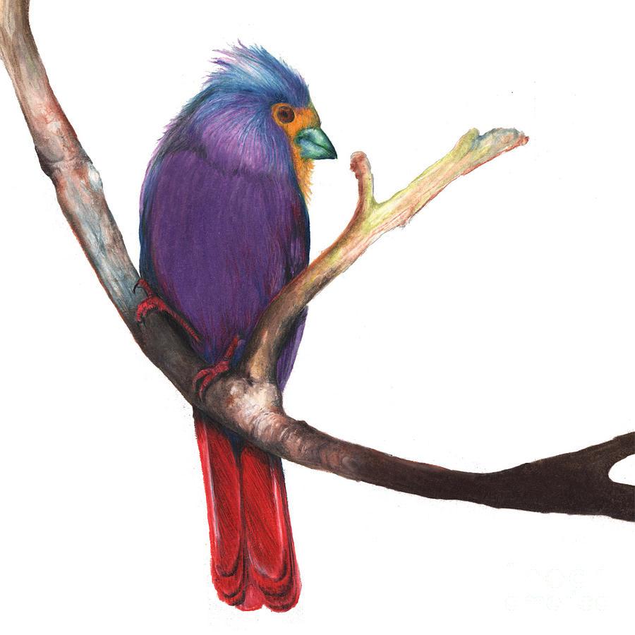 1 anthony burks bird drawings