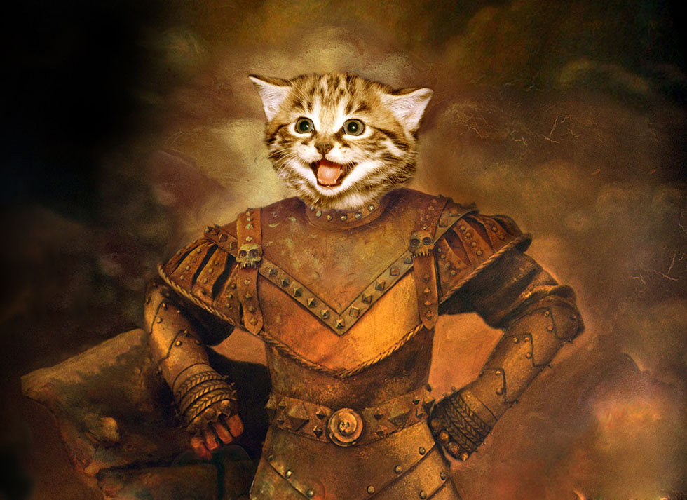 1 cat funny painitngs