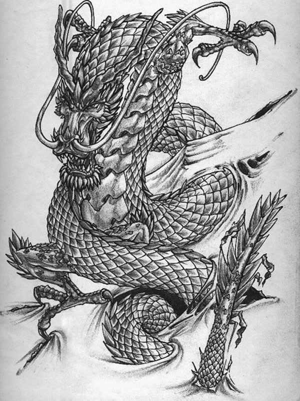 tatouage dragon drawings -  10