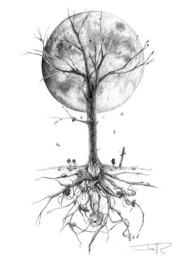 tree drawing -  11