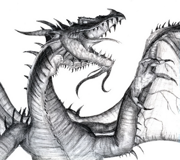dragon drawings -  13