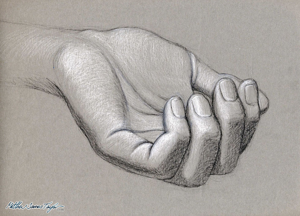 17 hand drawings by tonal