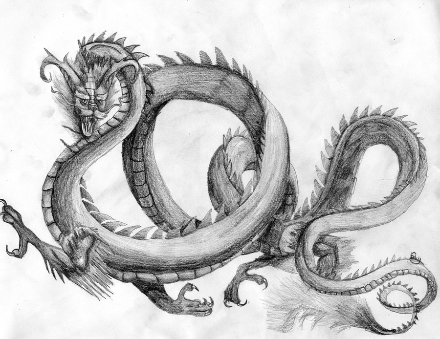 dragon drawings -  18
