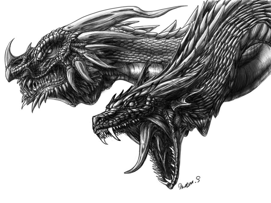 2 dragon drawings