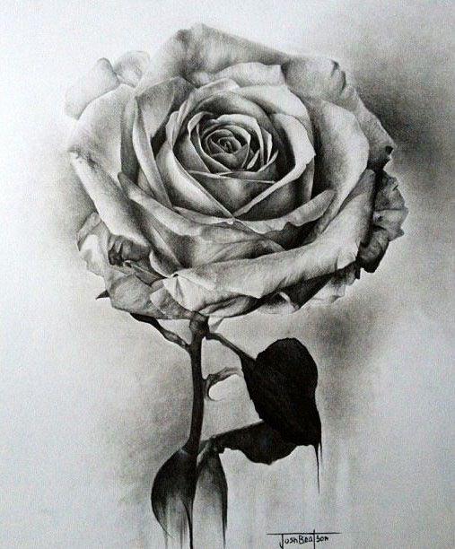 2 flower drawings