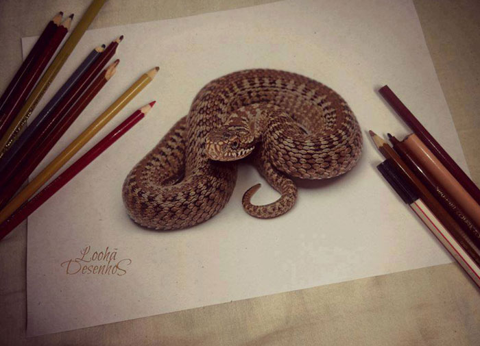 snake 3d drawings -  2