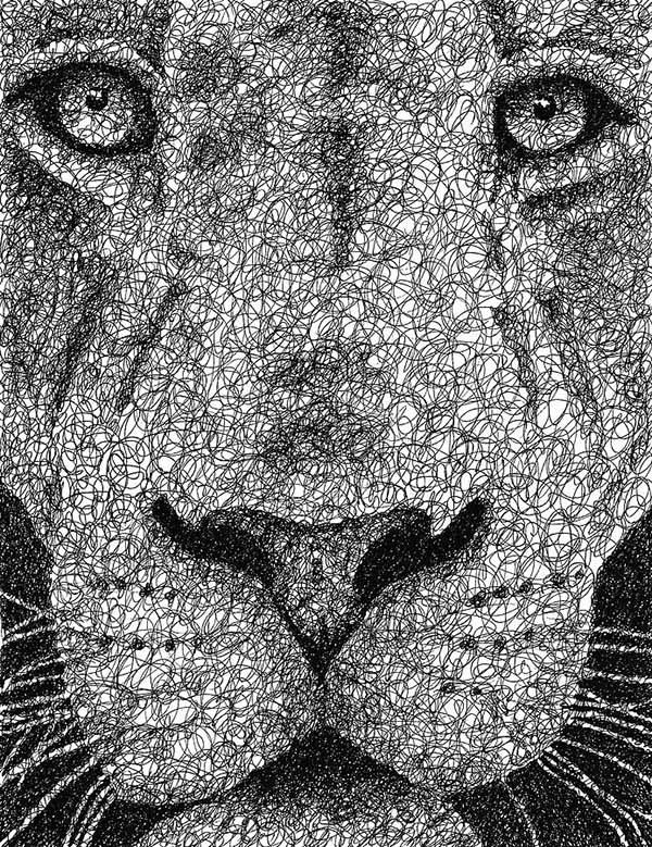 20 lion scribbles