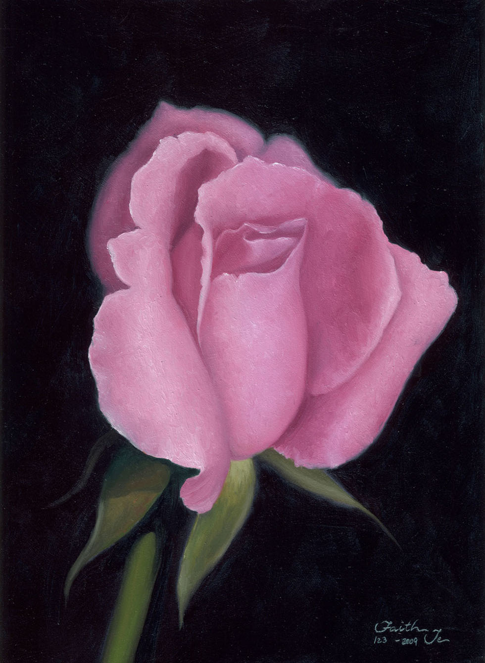 21 pink rose flower paintings