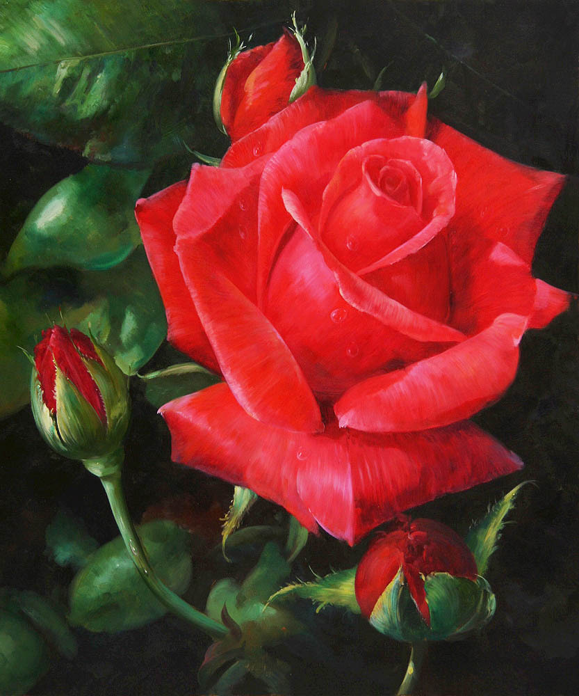 22 red rose flower painting