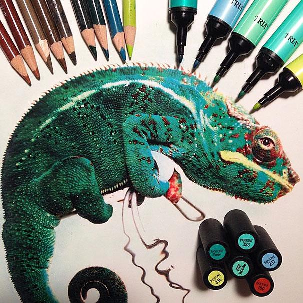 23 animal drawings by karla mialynne