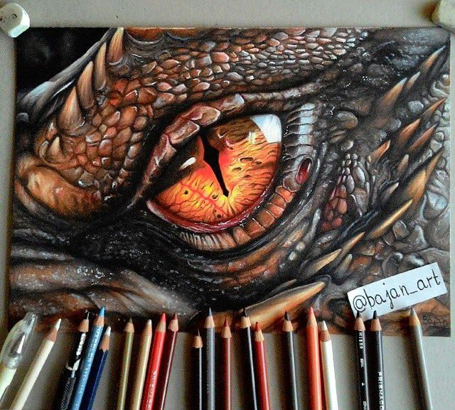 24 dragon drawings