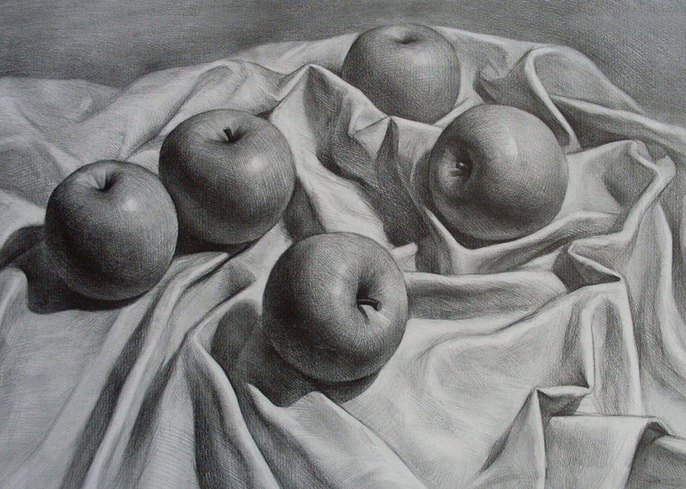 24 still life drawings