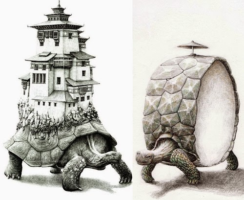 25 turtle surreal art