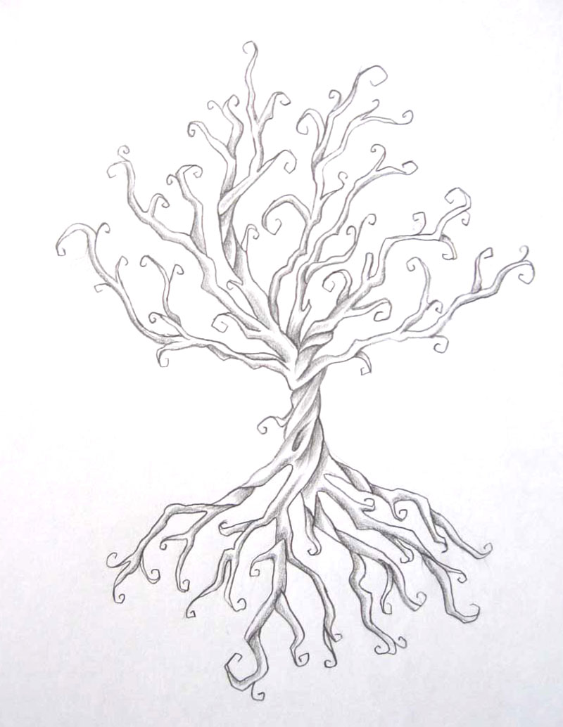 27 tree drawing