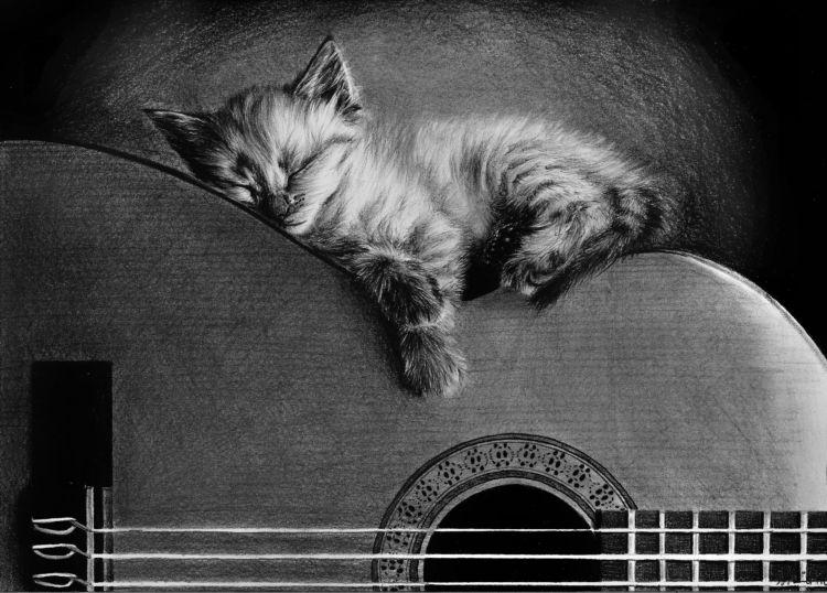cat drawings by tajus -  3