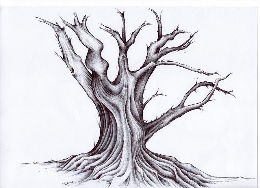 4 tree drawings