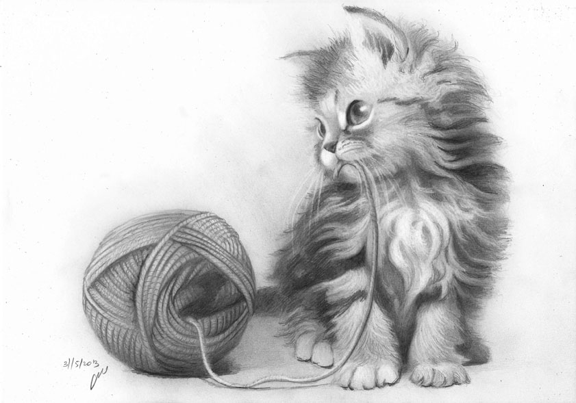 6 cat drawings by roni yoffe