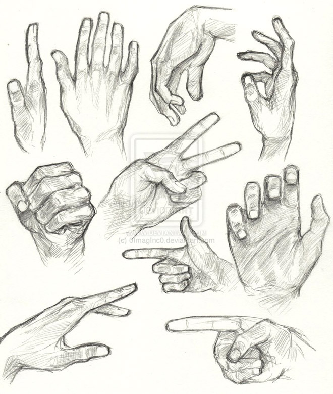 6 hand anatomy drawing by oimaginc