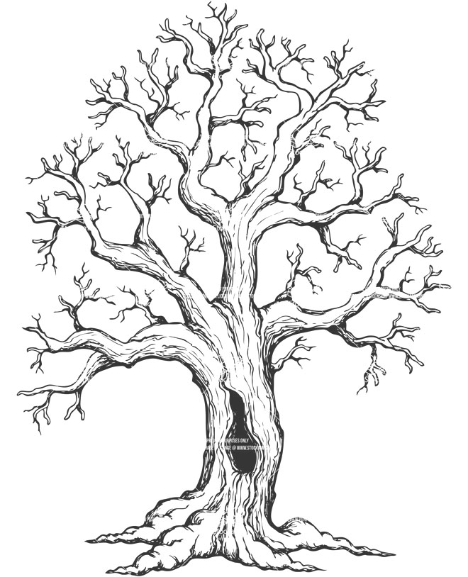 8 tree drawing