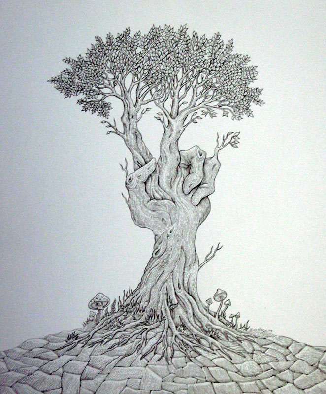 9 tree drawings